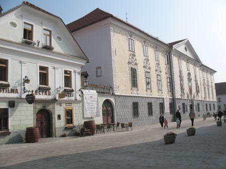 Graščina iz 16. stoletja s Čebelarskim muzejem, Glasbeno šolo in Festivalom stare glasbe;