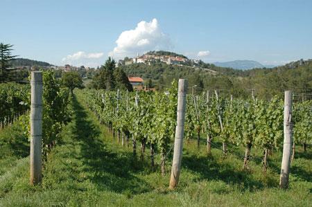 Pogled na Štanjel, mestece s srednjeveškim videzom