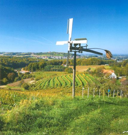 vodniki zemljevidi najlepse vinske poti najlepse vinske vinski vrh Najlepše vinske poti