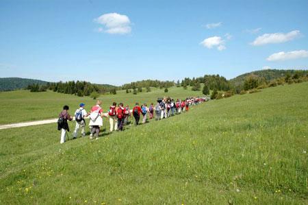 novice slika vabilo Vabilo na tretji pohod iz Babnega polja do Goričic