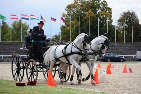 zanimivosti lipica tekmovanja4 Predstavitev kobilarne Lipica