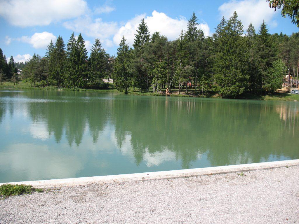jezera blosko leseni medved ki lovi ribe Bloško jezero – skriti biser